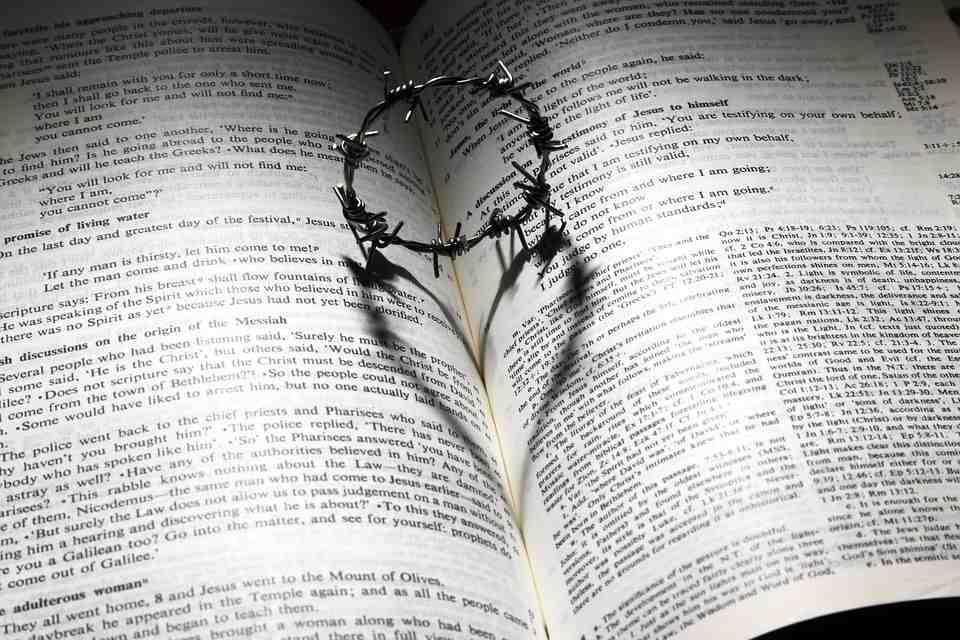 agradecimiento a dios por la biblia